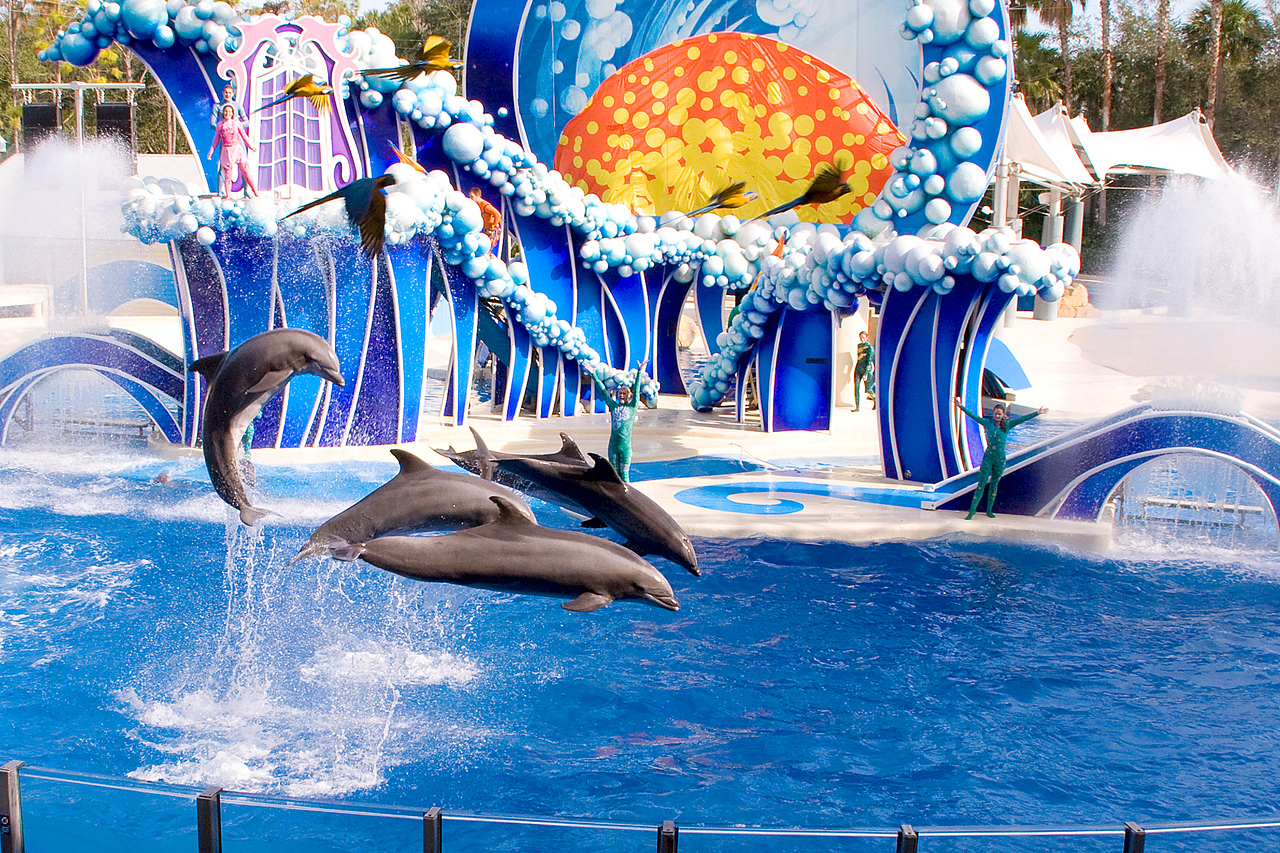 We spent a day at Seaworld (Cly's first visit)