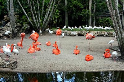 Flamingo Gardens - Fort Lauderdale