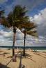 <b>Fort Lauderdale Beach</b>