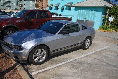 Our Rented Mustang