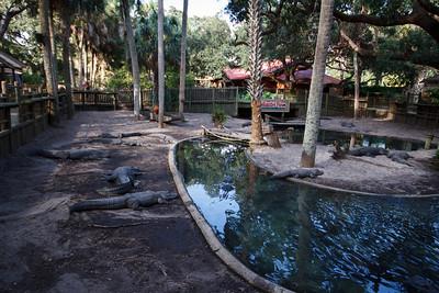 St Augustine Alligator Farm
