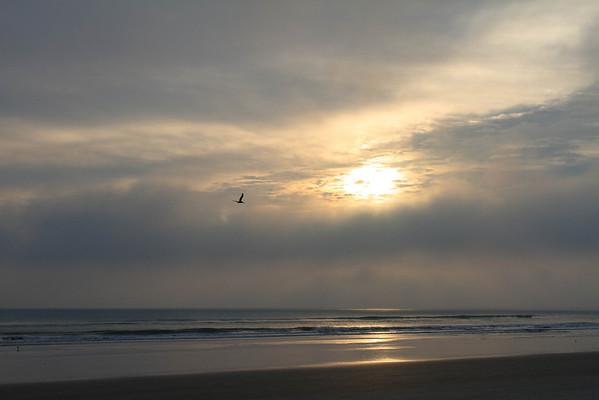 The Beach at NSB