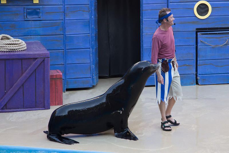 SeaWorld-2390
