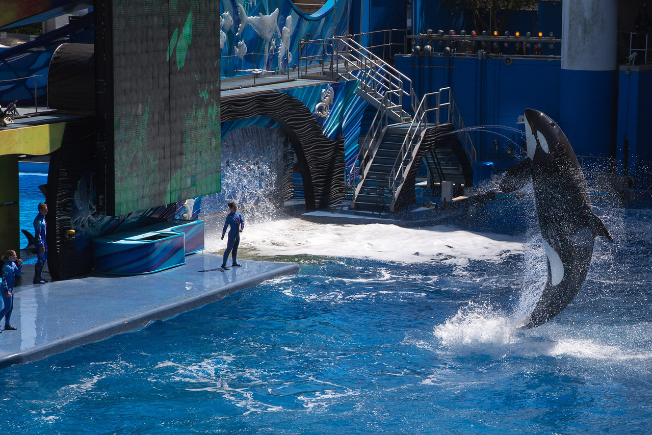 SeaWorld-2195