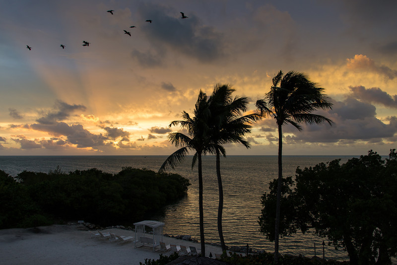 Morning view from Pelican Cove Resort, Islamorada, Florida - December 2013