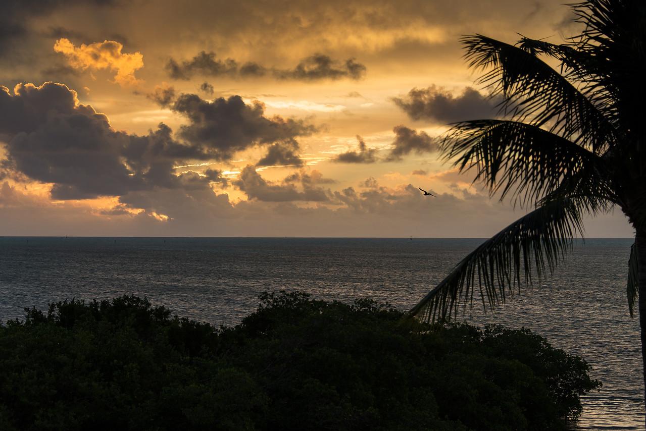 Morning view from Pelican Cove Resort, Islamorada, Florida - December 2013