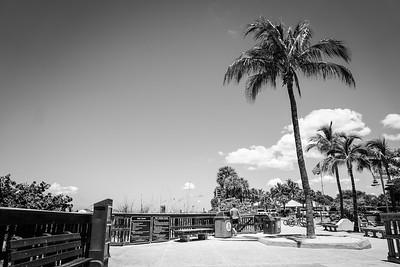Ft Myers Beach 1