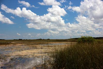 Everglades Safari Park / May 29