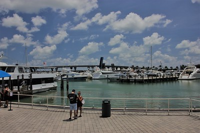 View from Bayside Marketplace