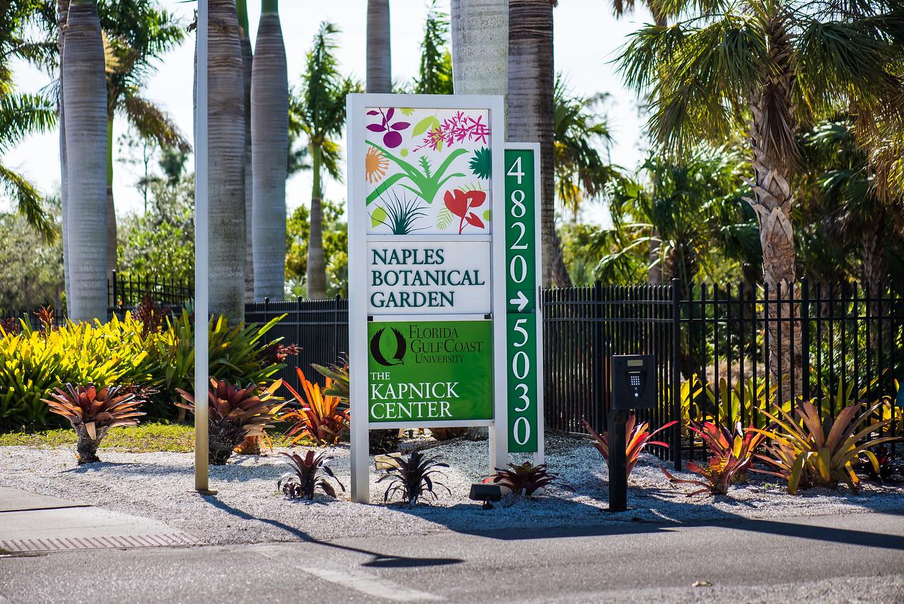 Naples Botanical Garden, FL - January 2018