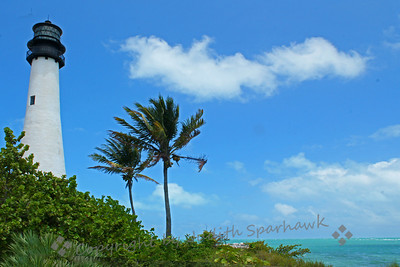 Cape Florida Lighthouse and Palms ~ A view of the lighthouse at Bill Baggs State Park, south of Miami, Florida