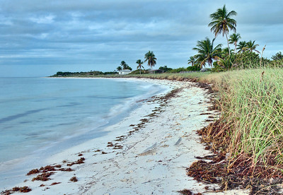 Early morning.  Bahia Honda Key, Florida
