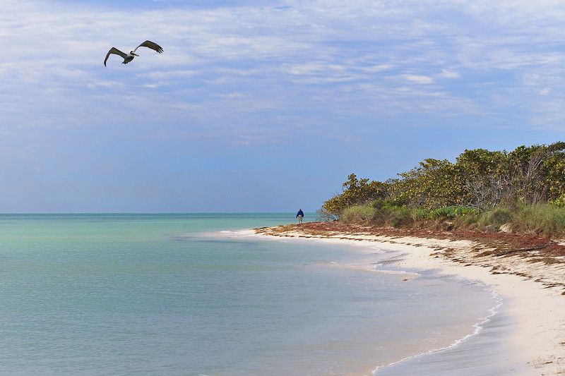 Bahia Honda beach walk.
