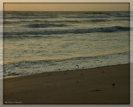 Florida - New Smyrna Beach