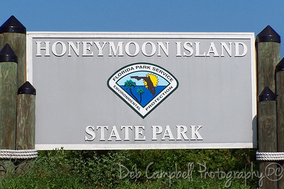 Welcome to Honeymoon Island State Park Dunedin, Florida