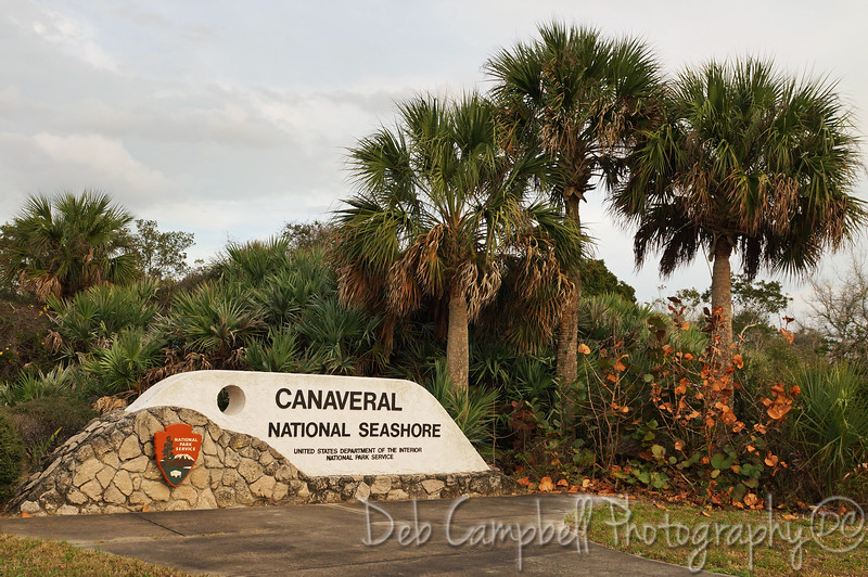 Welcome to  Canaveral National Seashore Titusville, Florida