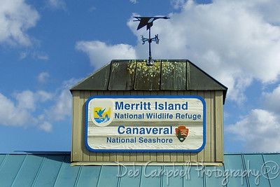 Welcome to  Merritt Island National Wildlife Refuge  Titusville, Florida