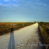 Bio-Lab Road with my shadow<br /> Merritt Island Wildlife Refuge<br /> Titusville, Florida