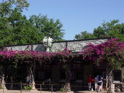Animal Kingdom® Theme Park / April 11, 2006