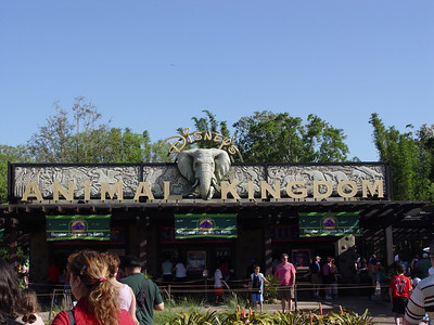 Animal Kingdom® Theme Park