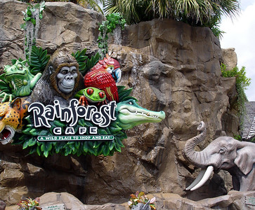 Rainforest Cafe® at Downtown Disney