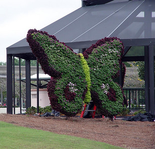 Getting ready for EPCOT's International Flower and Garden Festival