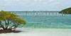 My favorite image from Boca Chita Key:  white sands, green sea, black cormorants, and Miami.  April, 2016.