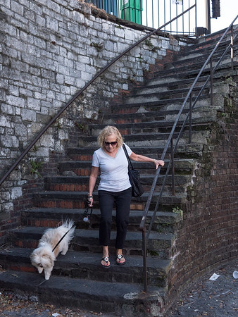 These scary and very steep steps leads one (and perhaps their dog) from busy Bay Street down to the Savannah River embankment with its shops, restaurants and promenade.