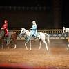 ArabianNights-9070
