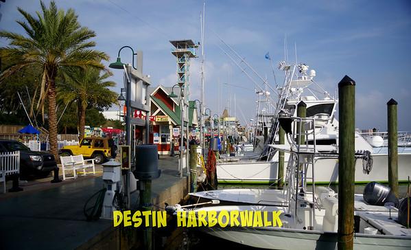 Destin Harborwalk - Dolphins