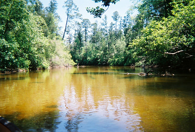 Canoeing along Coldwater Creek - Florida Panhandle