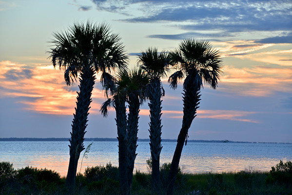 Florida Views  - Skies, Beaches, Sunrises and Other Sunshine State Beauty
