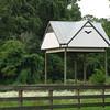 Bat House Near Lake Alice - Univ. of Florida