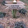 Herb Garden - Kanapaha Gardens - Gainesville, FL