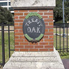 Treaty Oak Park - Jacksonville, FL