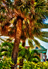 ~Southern Most House~<br /> Key West, Florida