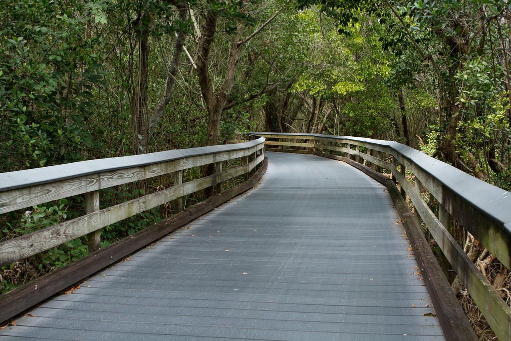 Boardwalk to the Clam Pass Beach, Naples Florida.