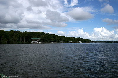 View of the St. John's river while crossing on the Ft. Gates Ferry.