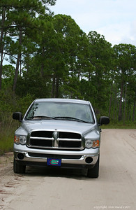 Driving on a forest road in Ocala National Forest.