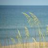 DJRI_copyright_2014-06-30@08-45-33