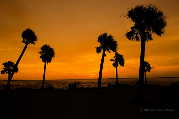 Sunset Beach, Fla