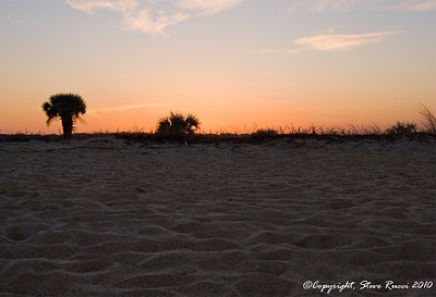 Looking up the dune from the beach at sunset, Washington Oaks Gardens State Park, Florida.