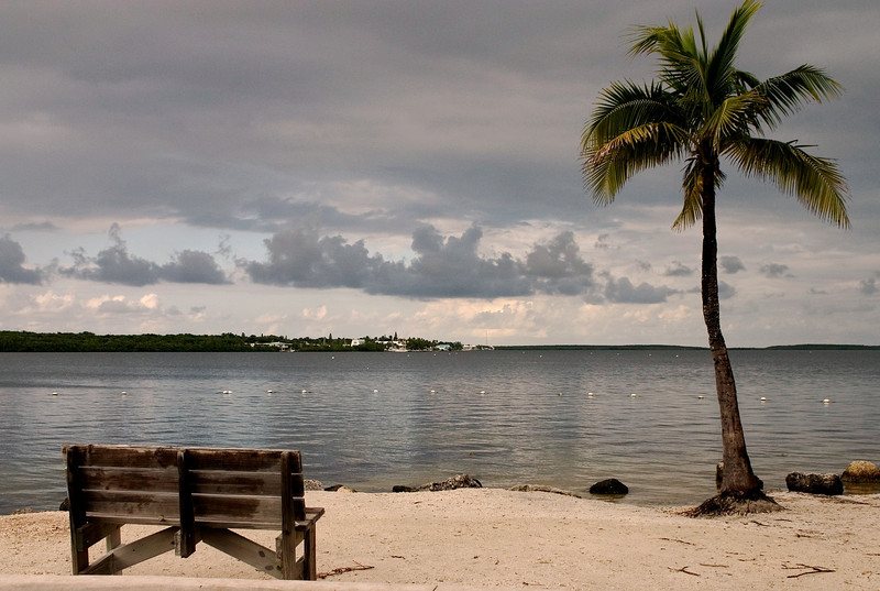 Bench looking out over the water Florida