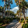 florida beach scene