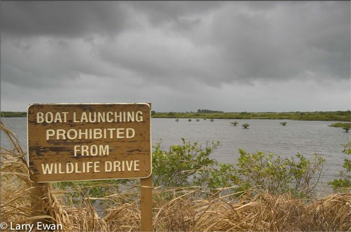 Black Point Wildlife Drive, Titusville