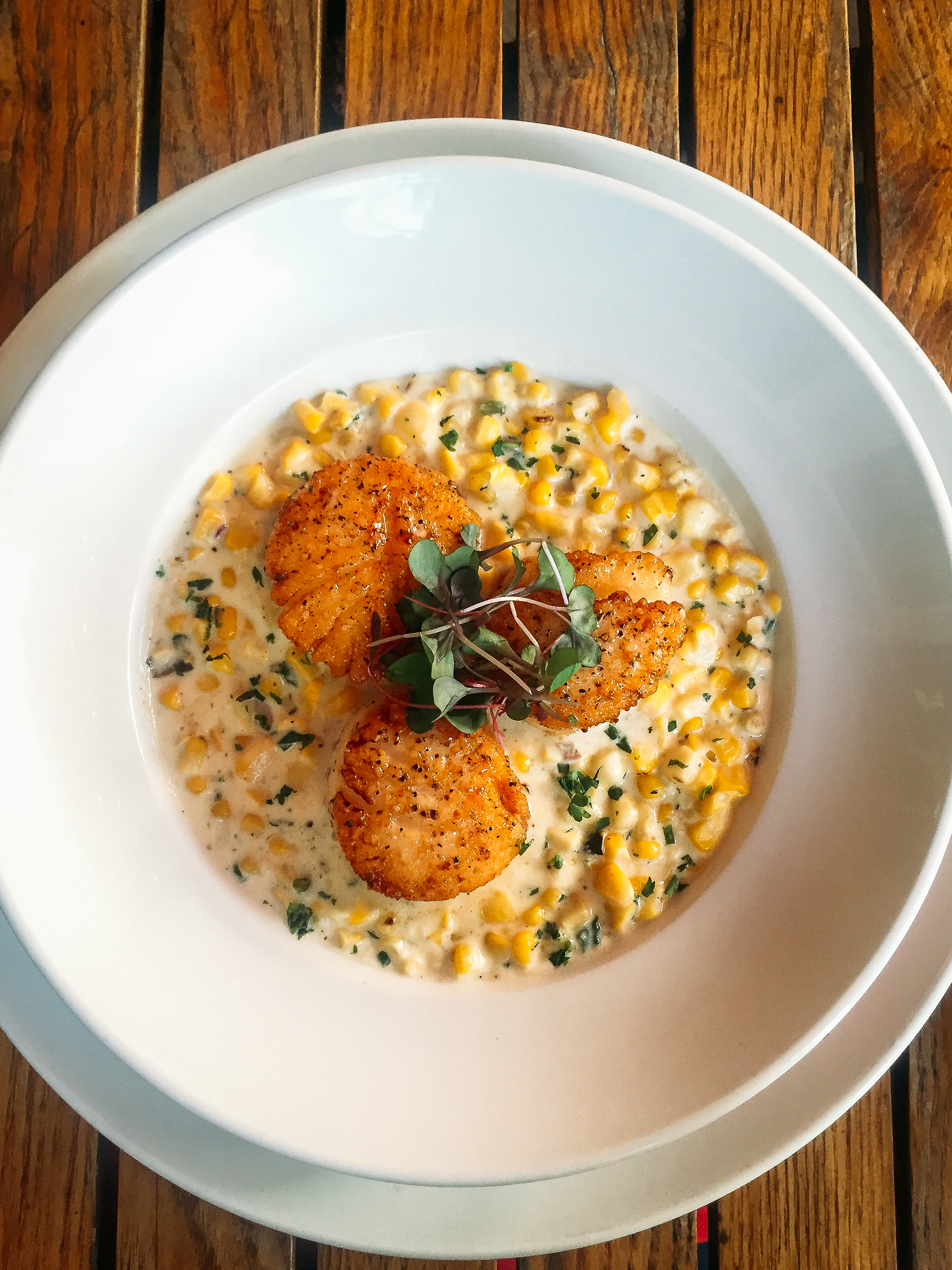 MADE is just one of many places to eat in Sarasota, Florida. Here is the scallops and corn risotto.