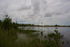Everglades near West Coast of Florida.