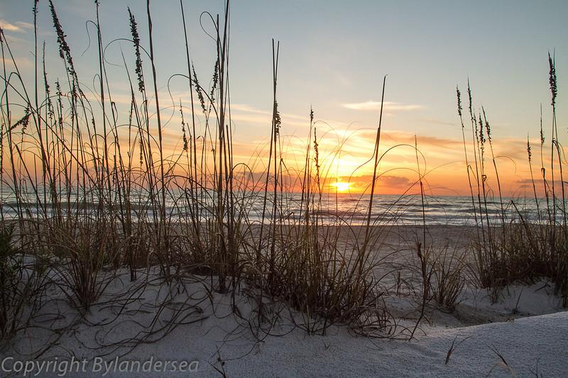 Sunrise at the beach- Longwood Key.