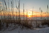 Sunrise at the beach- Longwood Key.