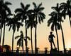 Sunset with David: Ringling Museum of Art, Sarasota